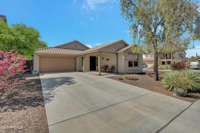12867 W Palo Brea Lane, Peoria, AZ 85383 (MLS #6223391) :: Yost Realty Group at RE/MAX Casa Grande