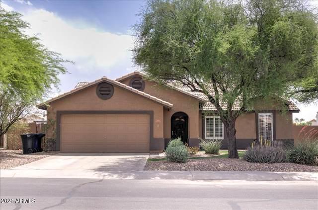 1551 E Carla Vista Drive, Chandler, AZ 85225 (MLS #6223478) :: Yost Realty Group at RE/MAX Casa Grande