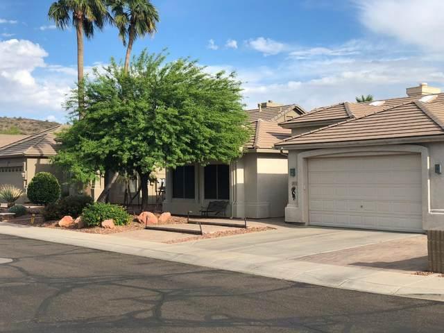 6619 W Misty Willow Lane, Glendale, AZ 85310 (MLS #6223498) :: Zolin Group
