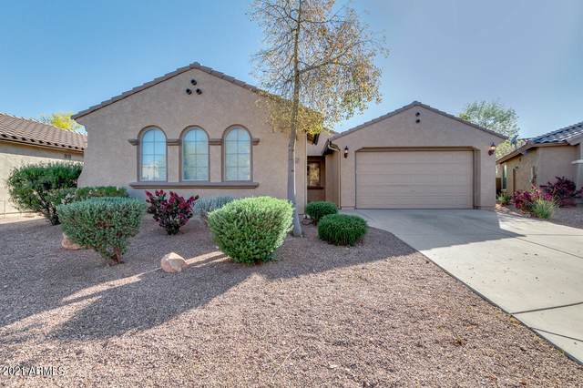 3534 N Emerald Creek Drive, Florence, AZ 85132 (MLS #6223550) :: Yost Realty Group at RE/MAX Casa Grande