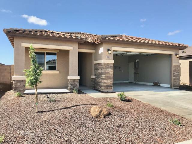 17209 W Diana Avenue, Waddell, AZ 85355 (MLS #6223702) :: Yost Realty Group at RE/MAX Casa Grande