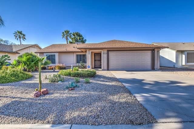 3020 E Bremen Street, Phoenix, AZ 85032 (MLS #6223826) :: Yost Realty Group at RE/MAX Casa Grande