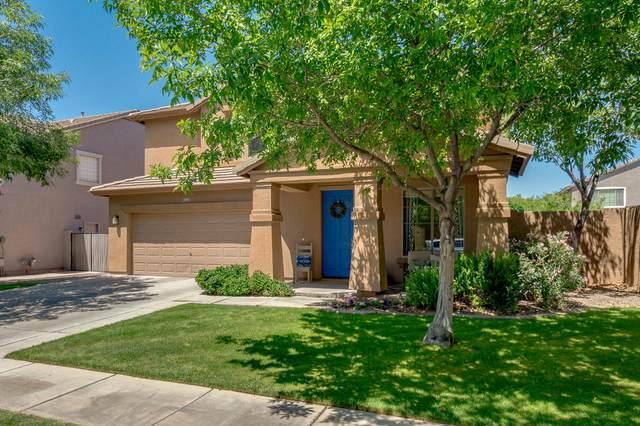 4116 E Page Avenue, Gilbert, AZ 85234 (MLS #6223906) :: Yost Realty Group at RE/MAX Casa Grande