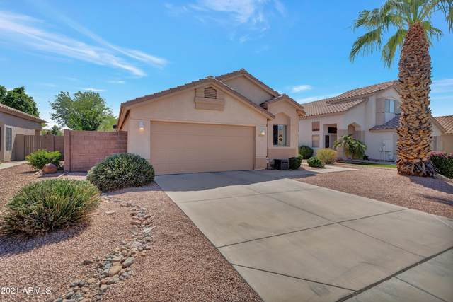 8729 W Lisbon Lane, Peoria, AZ 85381 (MLS #6223932) :: Yost Realty Group at RE/MAX Casa Grande
