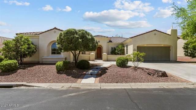 22908 N Hank Raymond Drive, Sun City West, AZ 85375 (MLS #6224550) :: Yost Realty Group at RE/MAX Casa Grande