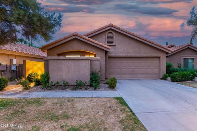 15622 N 50TH Street, Scottsdale, AZ 85254 (MLS #6224690) :: Yost Realty Group at RE/MAX Casa Grande
