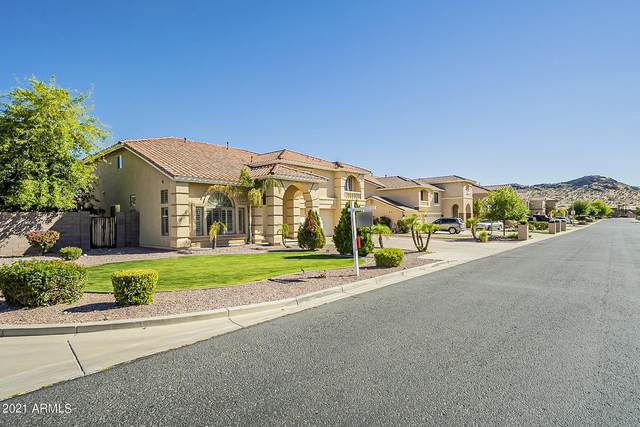 9733 W Keyser Drive, Peoria, AZ 85383 (MLS #6225084) :: My Home Group