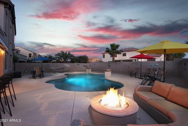 41141 W Coltin Way, Maricopa, AZ 85138 (MLS #6225827) :: Yost Realty Group at RE/MAX Casa Grande