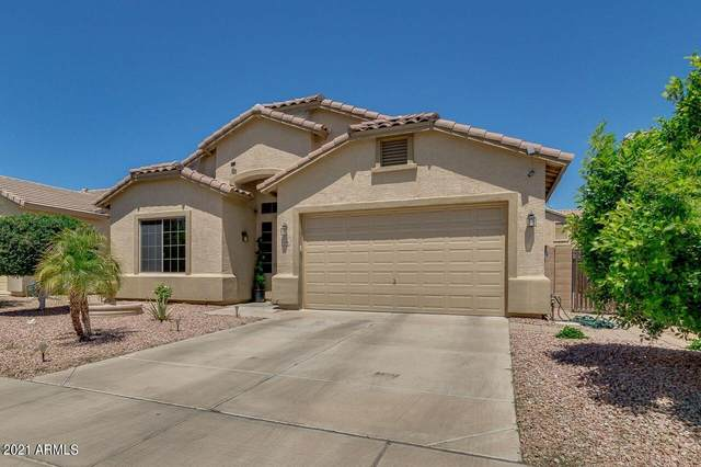 3290 W Goldmine Mountain Cove, Queen Creek, AZ 85142 (MLS #6225958) :: The Luna Team