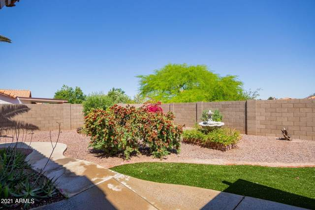 1314 E Sandra Terrace, Phoenix, AZ 85022 (MLS #6226585) :: The Luna Team