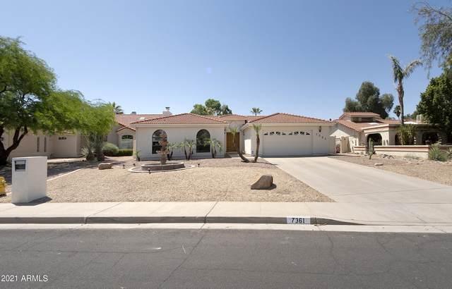 7361 E Pueblo Avenue, Mesa, AZ 85208 (MLS #6226833) :: Yost Realty Group at RE/MAX Casa Grande