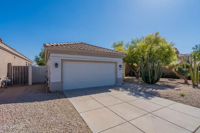 10137 E Meadow Hill Drive, Scottsdale, AZ 85260 (MLS #6226857) :: Yost Realty Group at RE/MAX Casa Grande