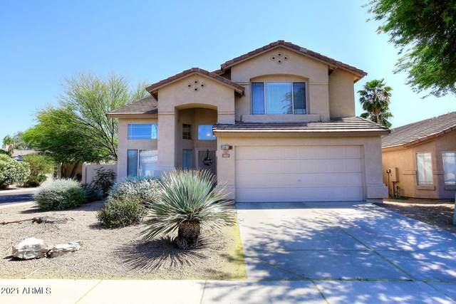 4425 E Tether Trail, Phoenix, AZ 85050 (MLS #6227582) :: Yost Realty Group at RE/MAX Casa Grande