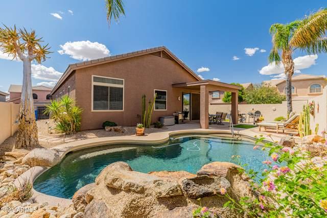 26257 N 42nd Street, Phoenix, AZ 85050 (MLS #6228207) :: Yost Realty Group at RE/MAX Casa Grande