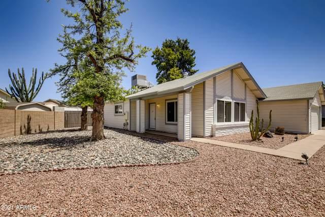 2434 W Kathleen Road, Phoenix, AZ 85023 (#6228533) :: The Josh Berkley Team