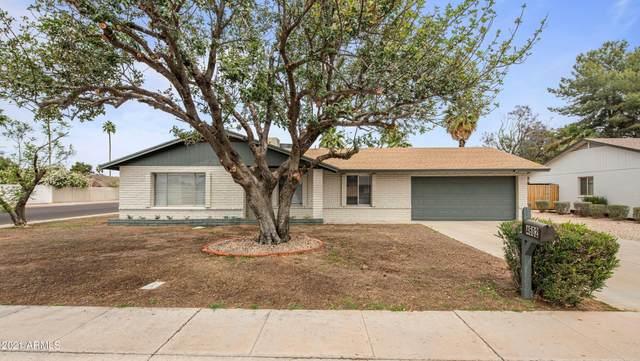 4602 E Joan De Arc Avenue, Phoenix, AZ 85032 (MLS #6228608) :: The Luna Team