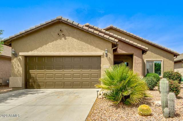 6494 W Georgetown Way, Florence, AZ 85132 (MLS #6229069) :: Yost Realty Group at RE/MAX Casa Grande