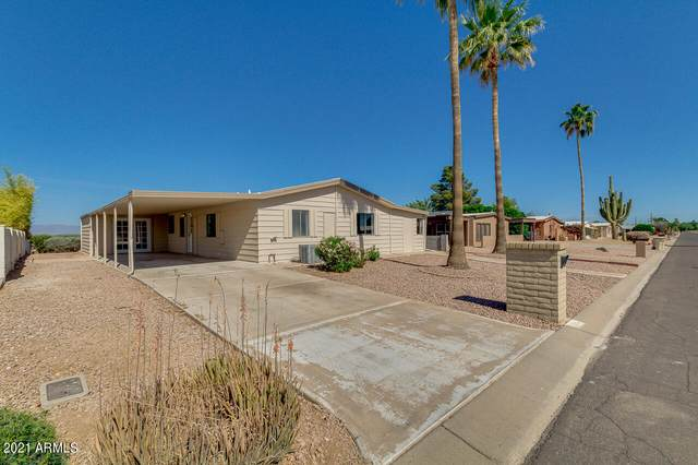 25840 S Illinois Avenue, Sun Lakes, AZ 85248 (MLS #6229258) :: Sheli Stoddart Team | M.A.Z. Realty Professionals
