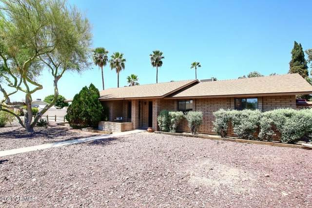 6110 E Hobart Street, Mesa, AZ 85205 (MLS #6229380) :: My Home Group