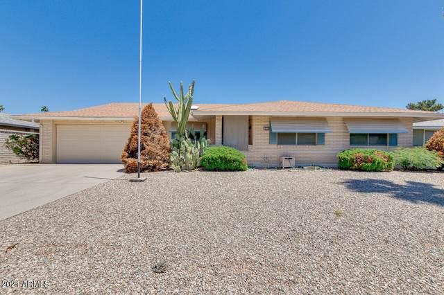 10336 W Cameo Drive, Sun City, AZ 85351 (MLS #6229470) :: Yost Realty Group at RE/MAX Casa Grande