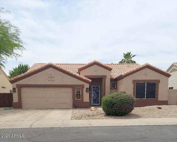 11127 W Citrus Grove Way, Avondale, AZ 85392 (MLS #6230204) :: Hurtado Homes Group