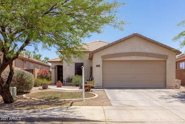 33925 N Wash View Road, Queen Creek, AZ 85142 (MLS #6230233) :: Yost Realty Group at RE/MAX Casa Grande