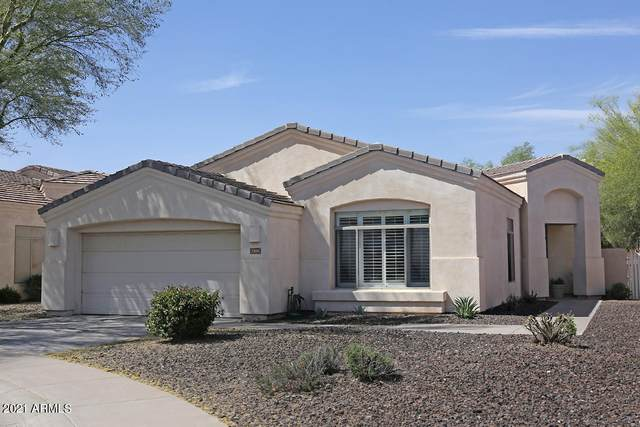 2206 E Constance Way, Phoenix, AZ 85042 (MLS #6230385) :: Yost Realty Group at RE/MAX Casa Grande