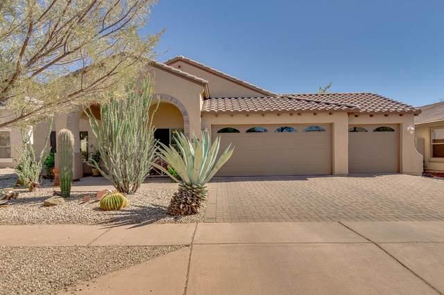 3021 W Caravaggio Lane, Phoenix, AZ 85086 (MLS #6230603) :: Executive Realty Advisors