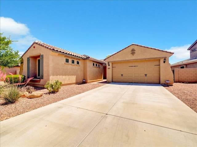 10773 W Whitehorn Way, Peoria, AZ 85383 (MLS #6230653) :: Long Realty West Valley