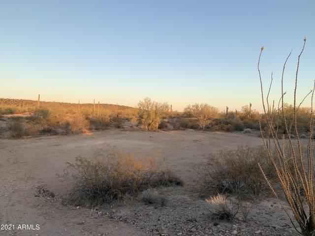 0 Reed Road, Florence, AZ 85132 (MLS #6231161) :: The Daniel Montez Real Estate Group