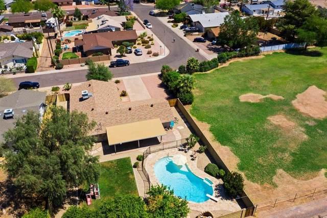 8245 E Coolidge Street, Scottsdale, AZ 85251 (MLS #6231178) :: The Ellens Team