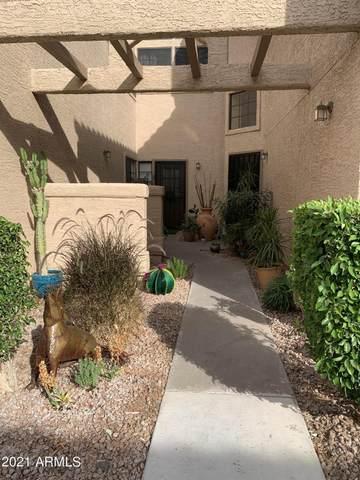 1001 N Pasadena Street #45, Mesa, AZ 85201 (MLS #6231826) :: Yost Realty Group at RE/MAX Casa Grande