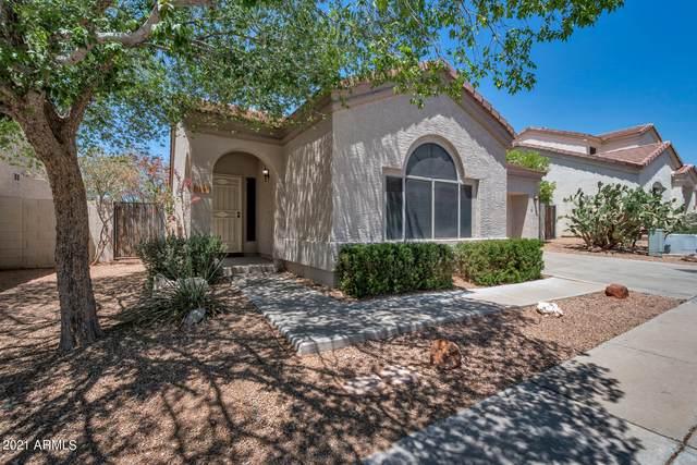 1148 N 87TH Place, Mesa, AZ 85207 (MLS #6232769) :: Yost Realty Group at RE/MAX Casa Grande