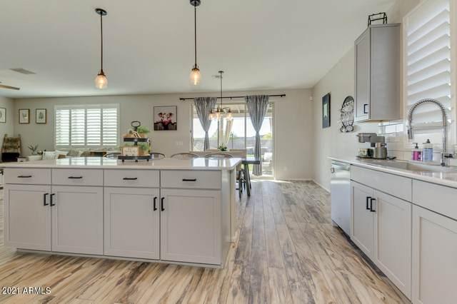 1028 W Canyonlands Court, San Tan Valley, AZ 85140 (MLS #6232857) :: Yost Realty Group at RE/MAX Casa Grande