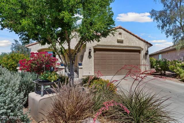 20800 N 273RD Avenue, Buckeye, AZ 85396 (MLS #6232912) :: My Home Group