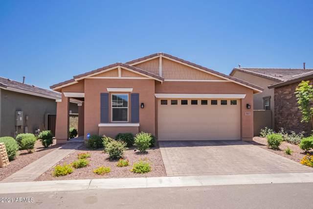 19847 W Devonshire Avenue, Litchfield Park, AZ 85340 (MLS #6232928) :: Long Realty West Valley
