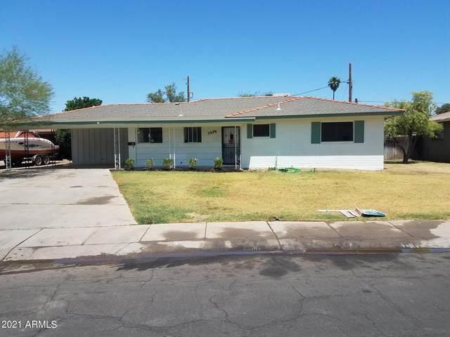 7334 N 23RD Drive, Phoenix, AZ 85021 (MLS #6233110) :: Lucido Agency