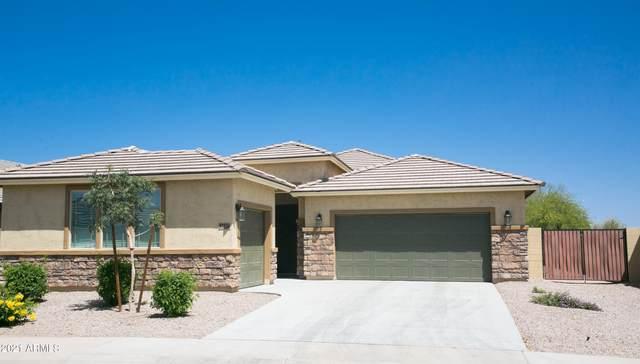 37536 W Frascati Avenue, Maricopa, AZ 85138 (MLS #6233587) :: Yost Realty Group at RE/MAX Casa Grande