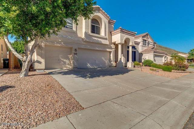 6410 W Hackamore Drive, Phoenix, AZ 85083 (MLS #6234553) :: Yost Realty Group at RE/MAX Casa Grande