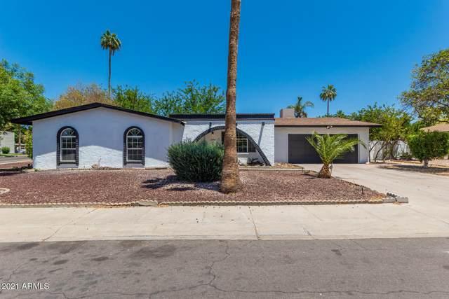 8344 E Via De Risa, Scottsdale, AZ 85258 (MLS #6234966) :: My Home Group