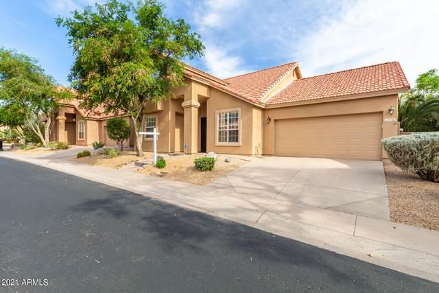 7381 E Camino Del Monte, Scottsdale, AZ 85255 (MLS #6235334) :: Yost Realty Group at RE/MAX Casa Grande