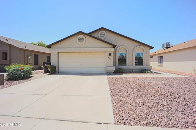 8666 N 108TH Lane, Peoria, AZ 85345 (MLS #6235459) :: Yost Realty Group at RE/MAX Casa Grande