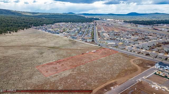 12050 W Shadow Mountain Drive, Bellemont, AZ 86015 (MLS #6235597) :: Yost Realty Group at RE/MAX Casa Grande