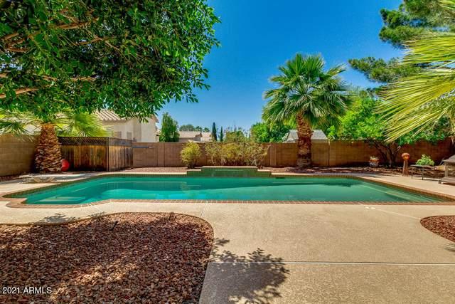 2426 S Pecan Drive, Chandler, AZ 85286 (MLS #6236137) :: Yost Realty Group at RE/MAX Casa Grande