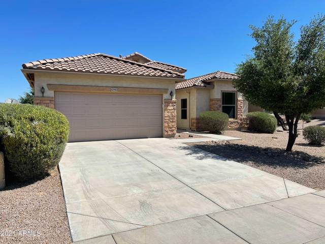 43943 W Buckhorn Trail, Maricopa, AZ 85138 (MLS #6236407) :: Yost Realty Group at RE/MAX Casa Grande