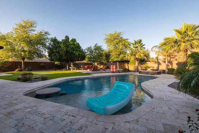 7801 E Davenport Drive, Scottsdale, AZ 85260 (MLS #6236589) :: Yost Realty Group at RE/MAX Casa Grande