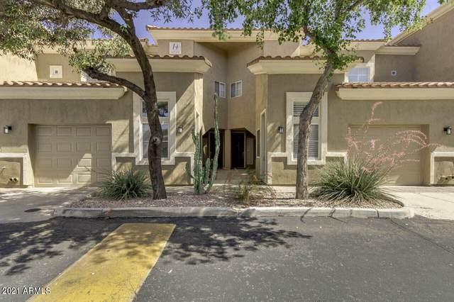 8245 E Bell Road #249, Scottsdale, AZ 85260 (MLS #6236678) :: The Dobbins Team