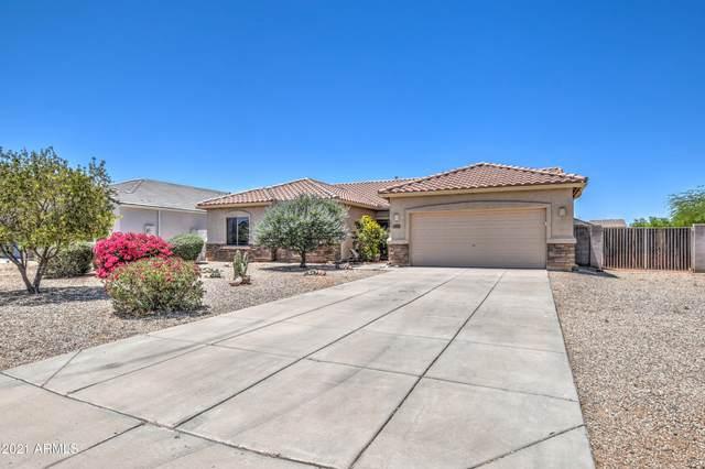 10611 E Primrose Court, Florence, AZ 85132 (MLS #6236772) :: The Laughton Team