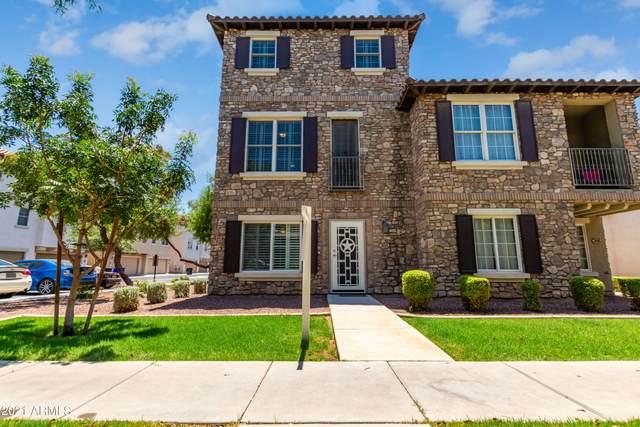3650 E Edna Drive, Gilbert, AZ 85296 (MLS #6237111) :: Yost Realty Group at RE/MAX Casa Grande
