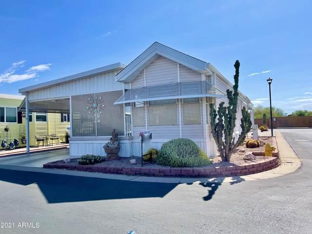 7750 E Broadway Road #339, Mesa, AZ 85208 (MLS #6237619) :: Hurtado Homes Group